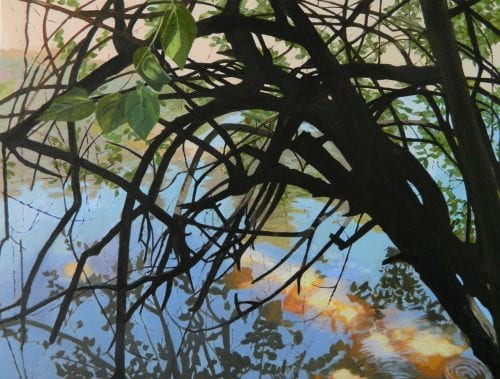 , Web of Life, Manly Harbour Gallery