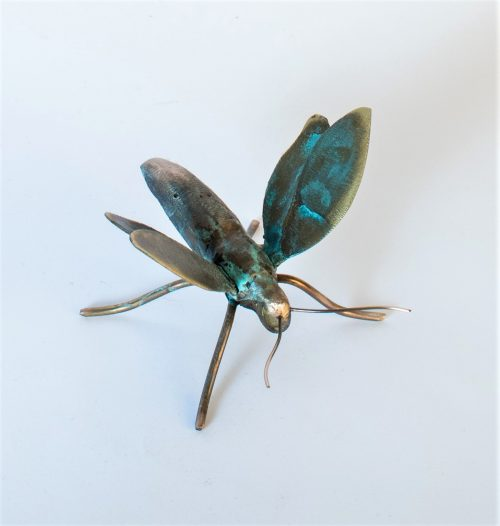 , Moth, Manly Harbour Gallery