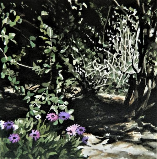 , Behind the Daisies, Manly Harbour Gallery