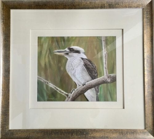 , Kooka Pose, Manly Harbour Gallery