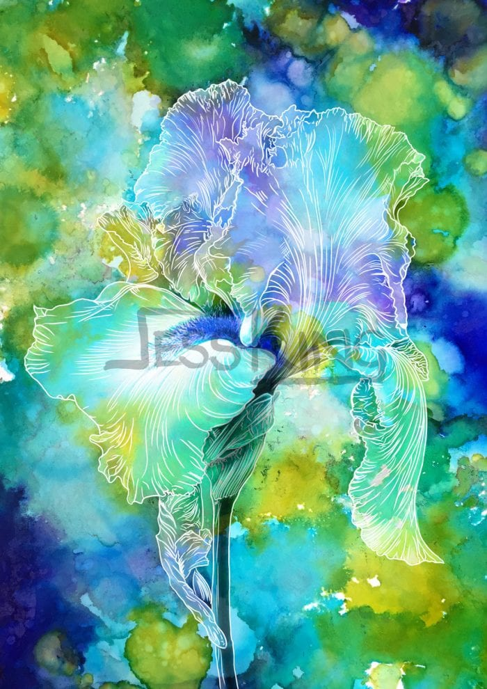 Blue Iris by Jessica King Digital Art