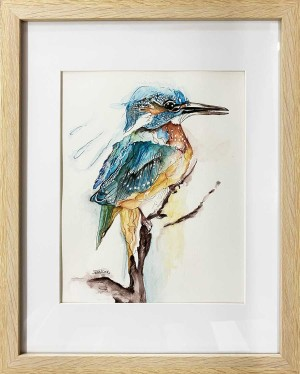 Kingfisher study by Jess King