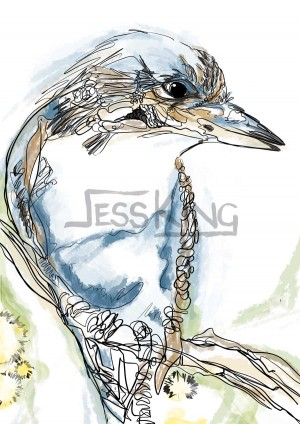 Kooka Line digital drawing by Jess King