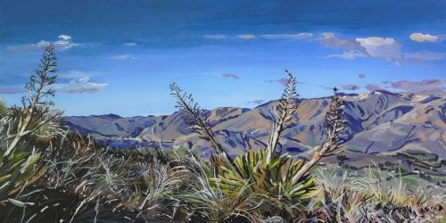 , View from Coronet Peak, Manly Harbour Gallery