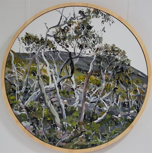 , Tassie Snow Gums, Manly Harbour Gallery
