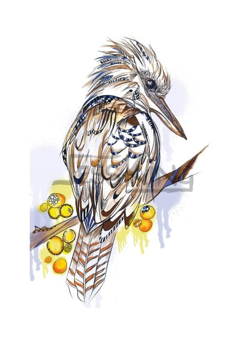 Kookaburra digital Illustration by Jess King