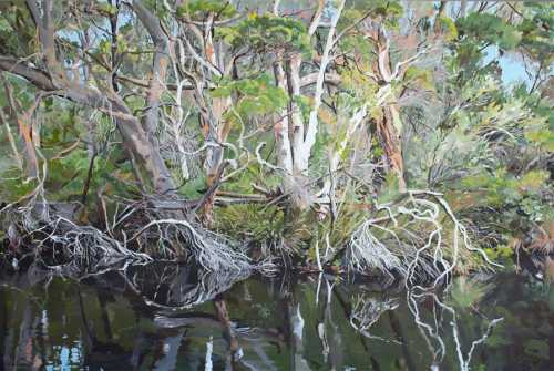 , A Tapestry of Twigs, Manly Harbour Gallery
