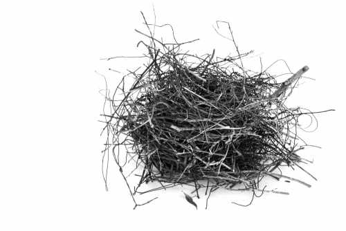 , Magpie Nest 2, Manly Harbour Gallery