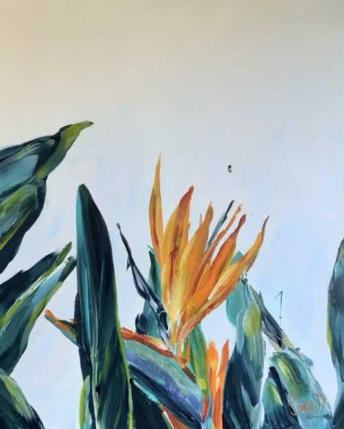 , Strelitzia, Manly Harbour Gallery
